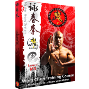 wing chun training course level 1 package
