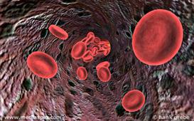 blood 2011
