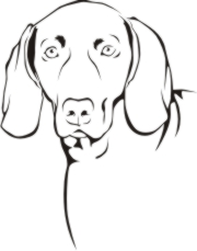 Weimaraner Machine Embroidery File | Other Files | Arts and Crafts