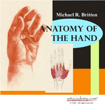 anatomy of the hands pdf