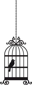 birdcage #1