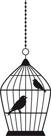 birdcage #4