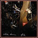 WHITE DENIM Fits (2009) (DOWNTOWN RECORDS) (23 TRACKS) 320 Kbps MP3 ALBUM | Music | Rock