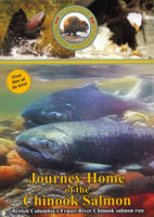 canadian wildlife journey home of the chinook salmon volume  6