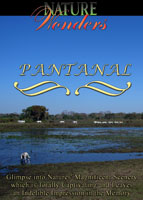 nature wonders  pantanal dvd global television arcadia films