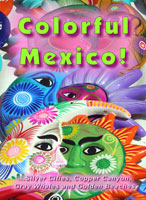 Colorful Mexico, DVD, Worldwide Travel Films | Movies and Videos | Special Interest