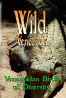 Wild Venezuela Venezuelan Birds of Diversity DVD Ferraro Nature Films | Movies and Videos | Special Interest