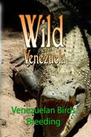 wild venezuela venezuelan birds breeding dvd ferraro nature films