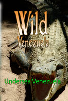Wild Venezuela Undersea Venezuela DVD Ferraro Nature Films | Movies and Videos | Special Interest