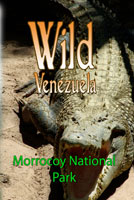 Wild Venezuela Morrocoy National Park DVD Ferraro Nature Films | Movies and Videos | Special Interest