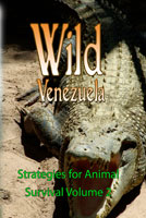 Wild Venezuela Strategies for Animal Survival Volume 2 DVD Ferraro Nature Films | Movies and Videos | Special Interest