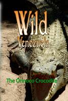 Wild Venezuela The Orinoco Crocodile DVD Ferraro Nature Films | Movies and Videos | Special Interest