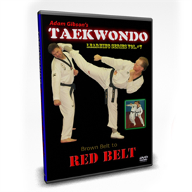taekwondo-red belt requirements-by adam gibson