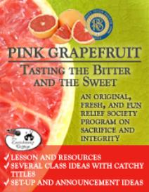 pink grapefruit supplemental ebook: planning the party
