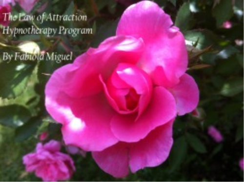 First Additional product image for - The Law of Attraction Hypnotherapy Program