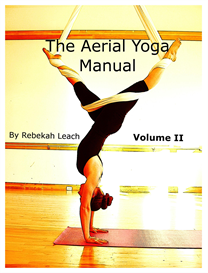 aerial yoga manual vol 2