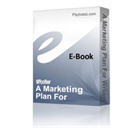 A Marketing Plan For Writers | Audio Books | Business and Money