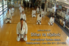 Val Mijailovic Karate Class DOWNLOAD | Movies and Videos | Special Interest