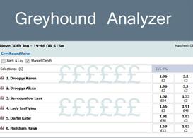 betfair greyhound analyzer