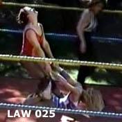 law025