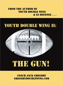 youth double wing ii: the gun