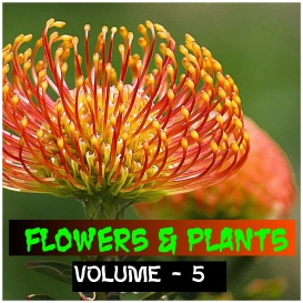 flowers and plants - volume - 5