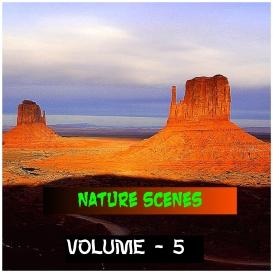 natural scenes - volume - 5