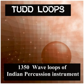 asian tudd loops