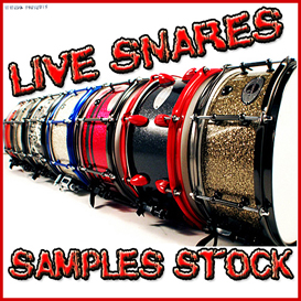 acoustic live snare snares drum drums pop glam rock heavy hard metal grunge 24 bit samples