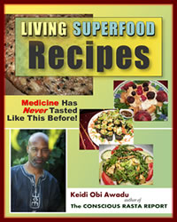 Living Superfood Recipes: Medicine has NEVER Tasted Like This Before | eBooks | Food and Cooking