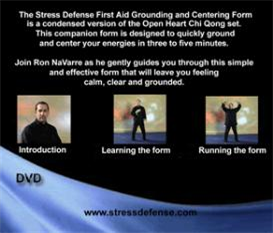 stress defense first aid form