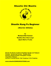 shaolin kung fu beginner - warrior athlete