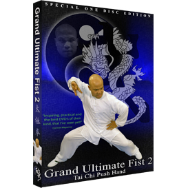 grand ultimate fist 2