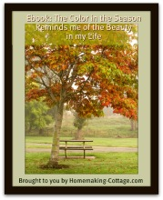 The Color of the Season Reminds me of the Beauty in my Life | eBooks | Home and Garden