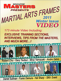 martial arts frames video