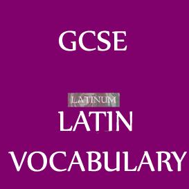 gcse latin vocabulary in latin-english-latin audio 53 minutes