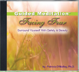 facing fear - the power within™ guided meditation series